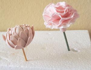 Mum and Carnation
